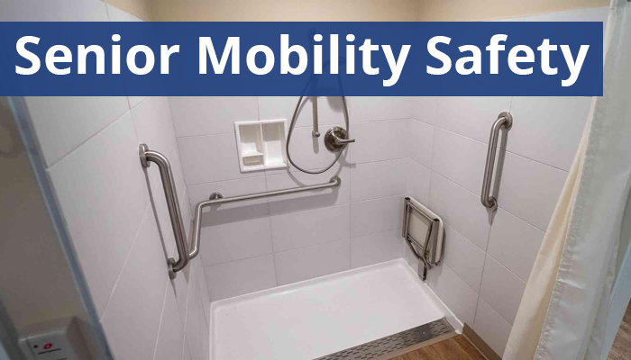 Senior Mobility Safety